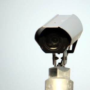 Camera-IMG_1961
